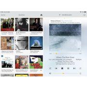 Lindemann Audio Limetree NETWORK II audiophile hálózati zene lejátszó